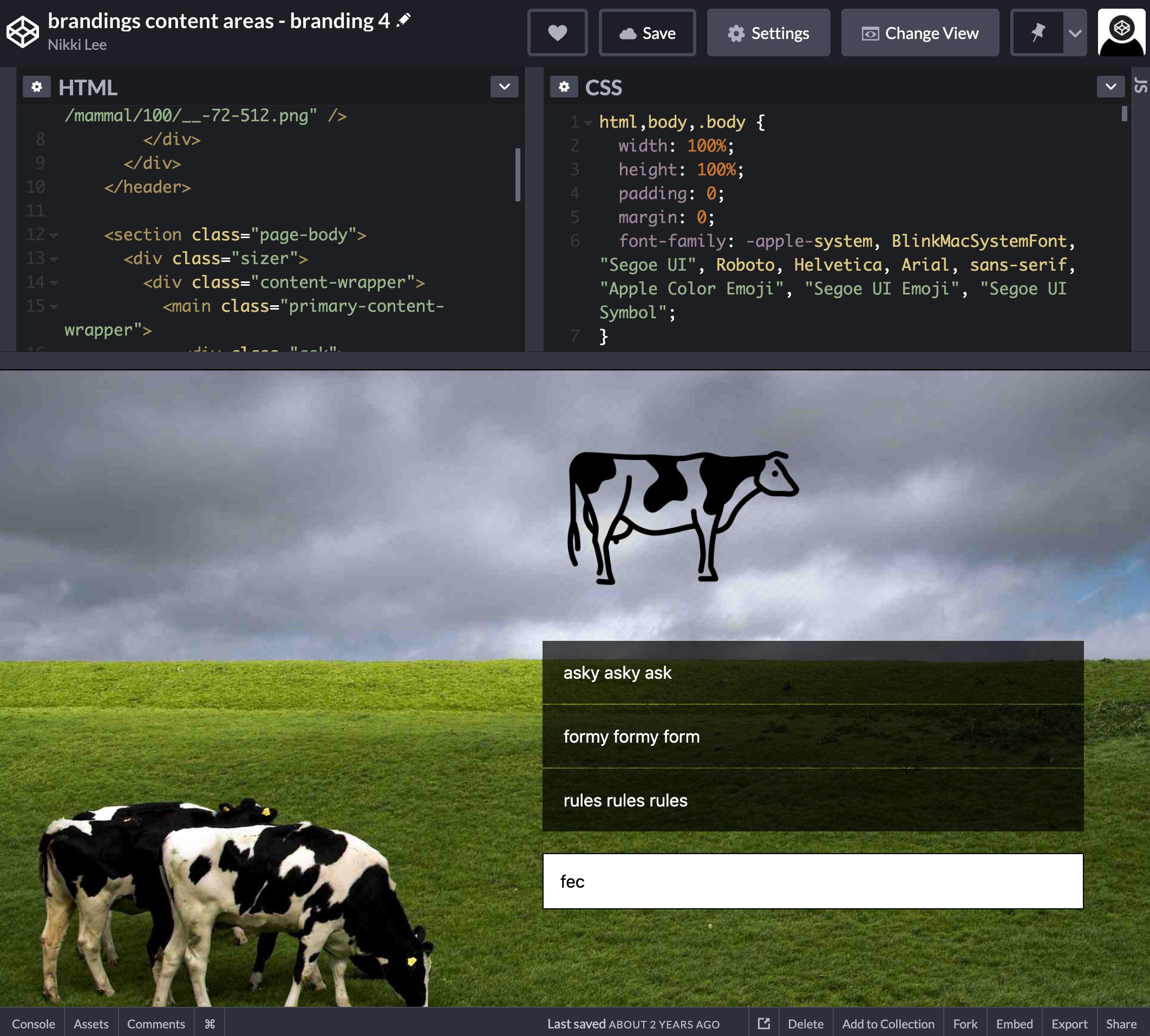 a screenshot of codepen