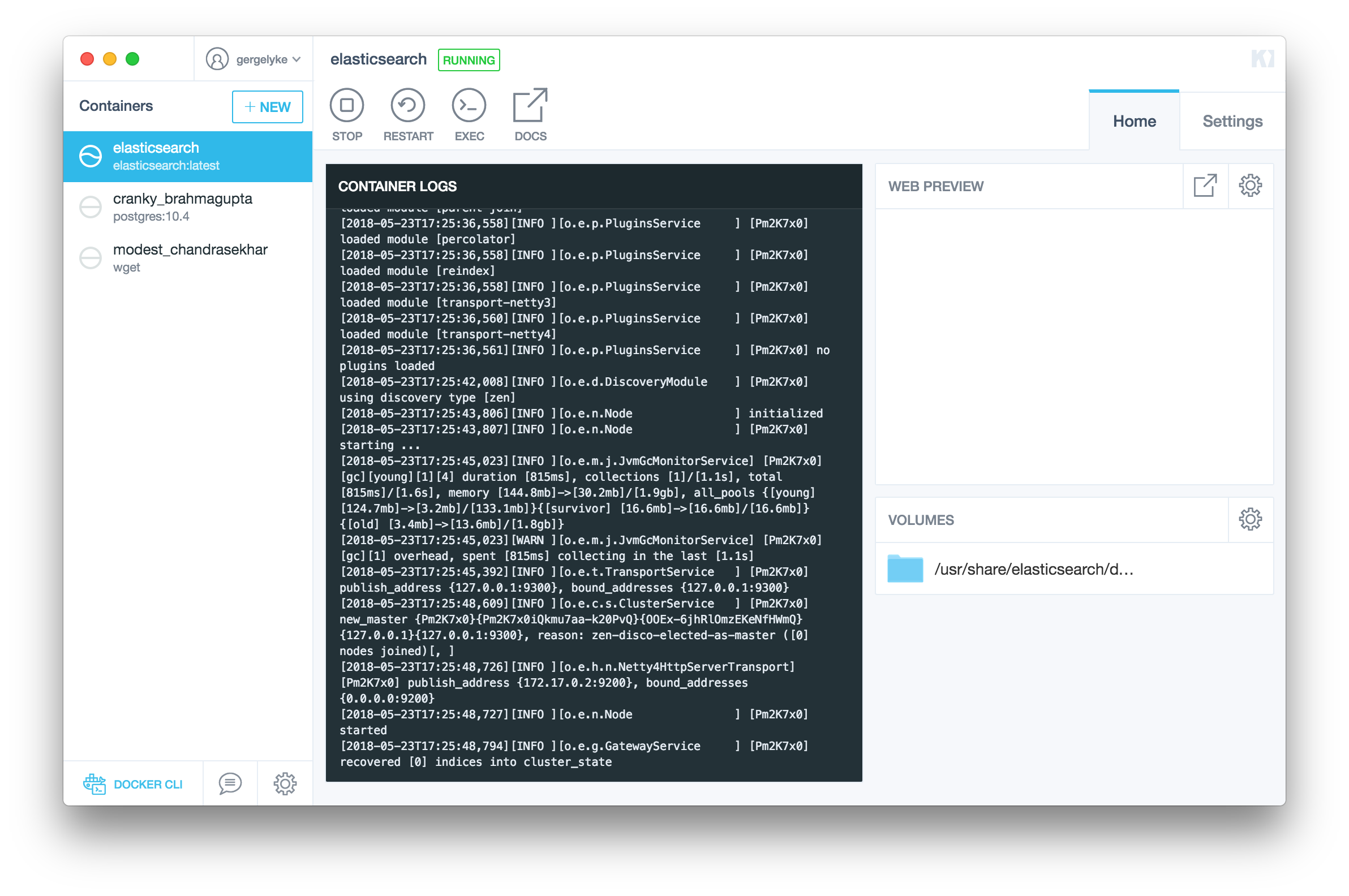 ElasticSearch with Kitematic- Running