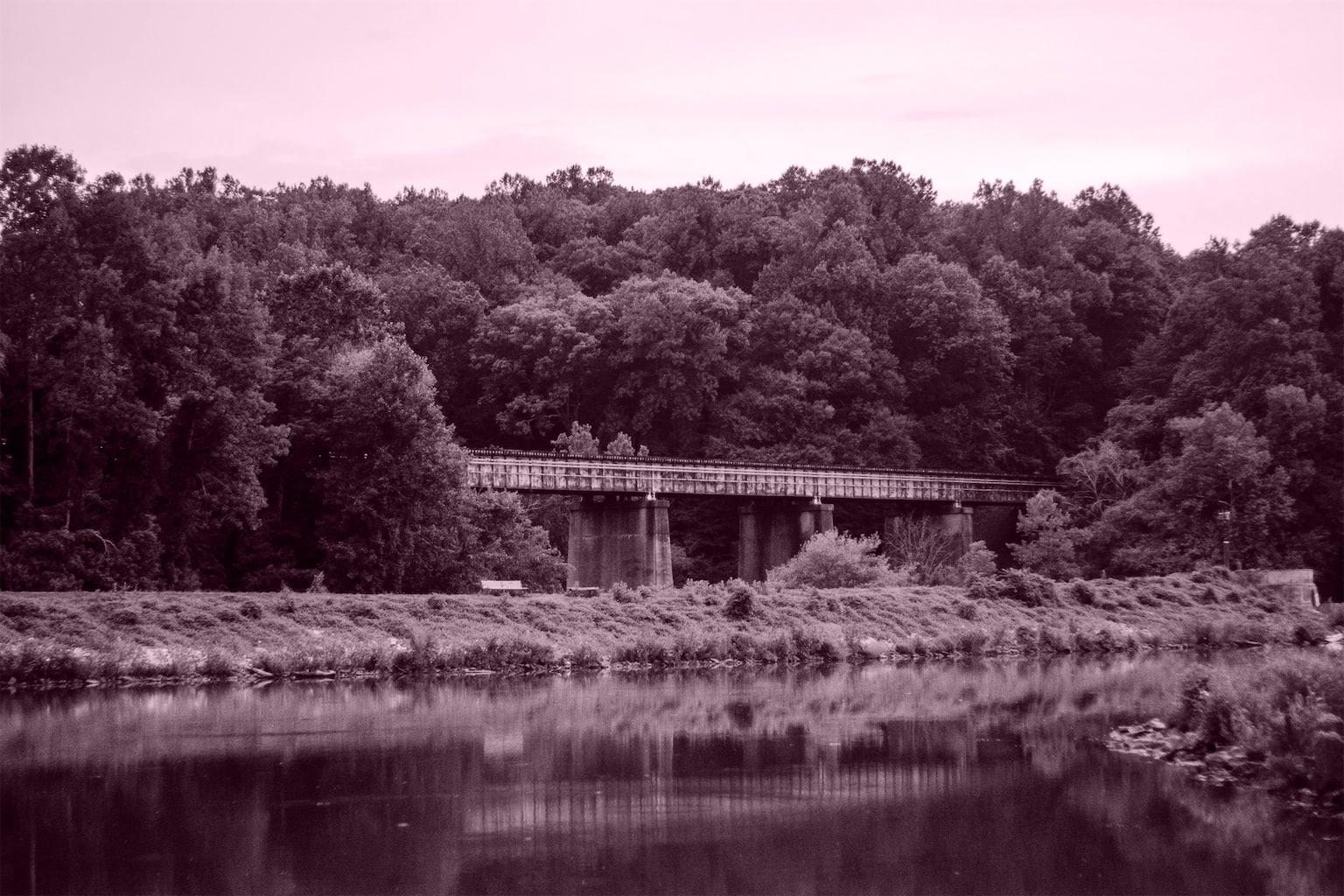 Amtrak bridge surrounded by foliage at Lake Accotink, 2019. Lake Accotink, VA.