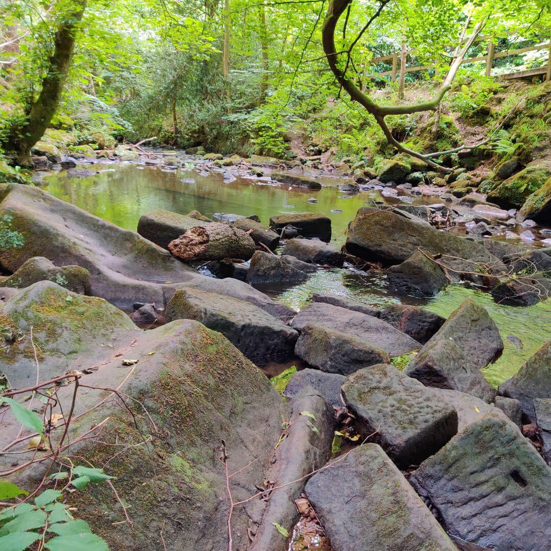 Meanwood Park stream with rocks