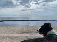Nina frente a una alberca con vista al mar de Mazatán