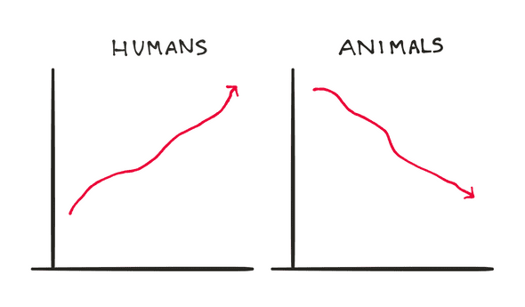 humans killed animals