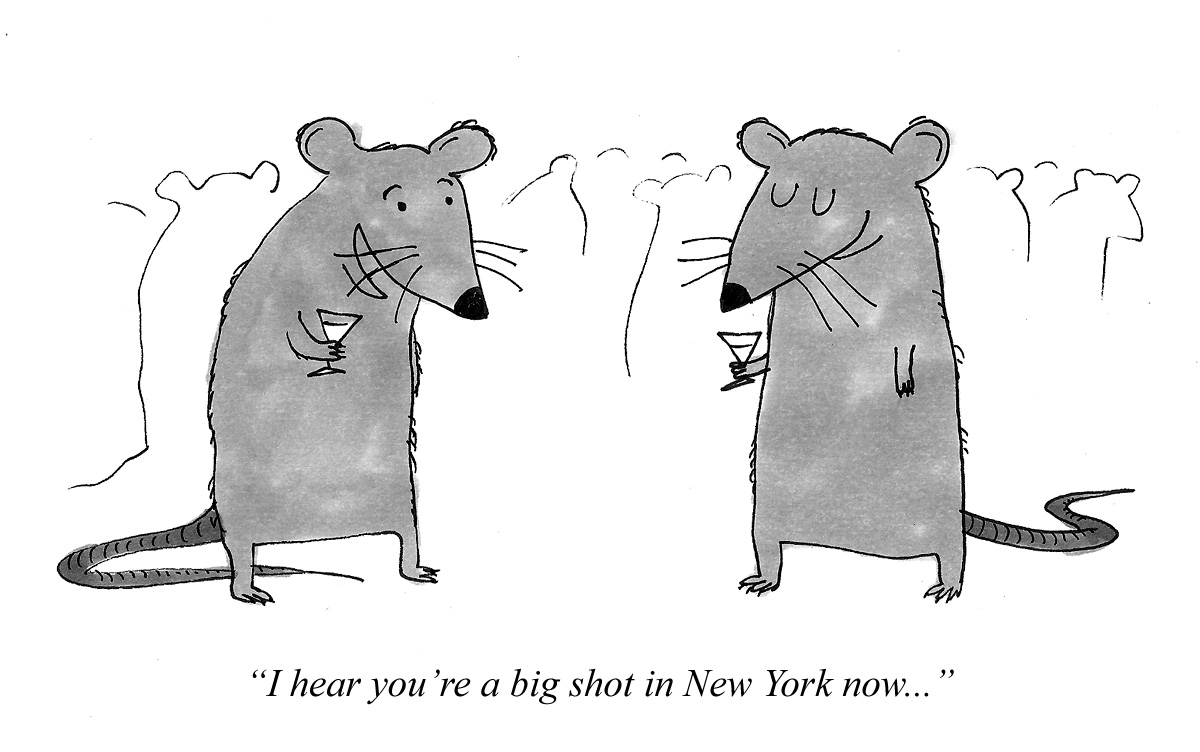 I hear you're a big shot in New York now...