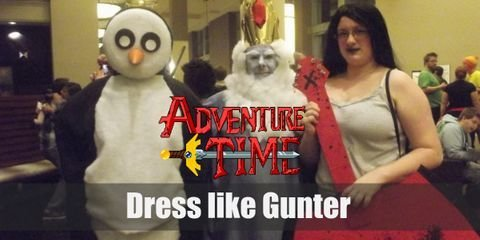 Gunter's signature appearance looks quite simple for it merely is a regular penguin. It has a black back and flippers with white belly, yellow beak and feet, and big black eyes.