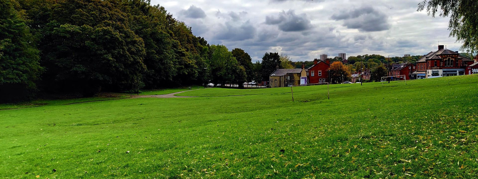 Grassing park at Burley Village Green with houses in the distance.