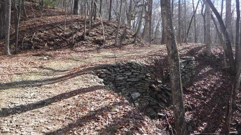 Former logging road