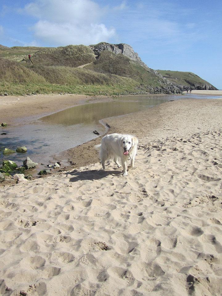 Bosherston Beach, Pembrokeshire