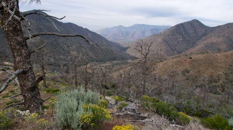 View into canyon
