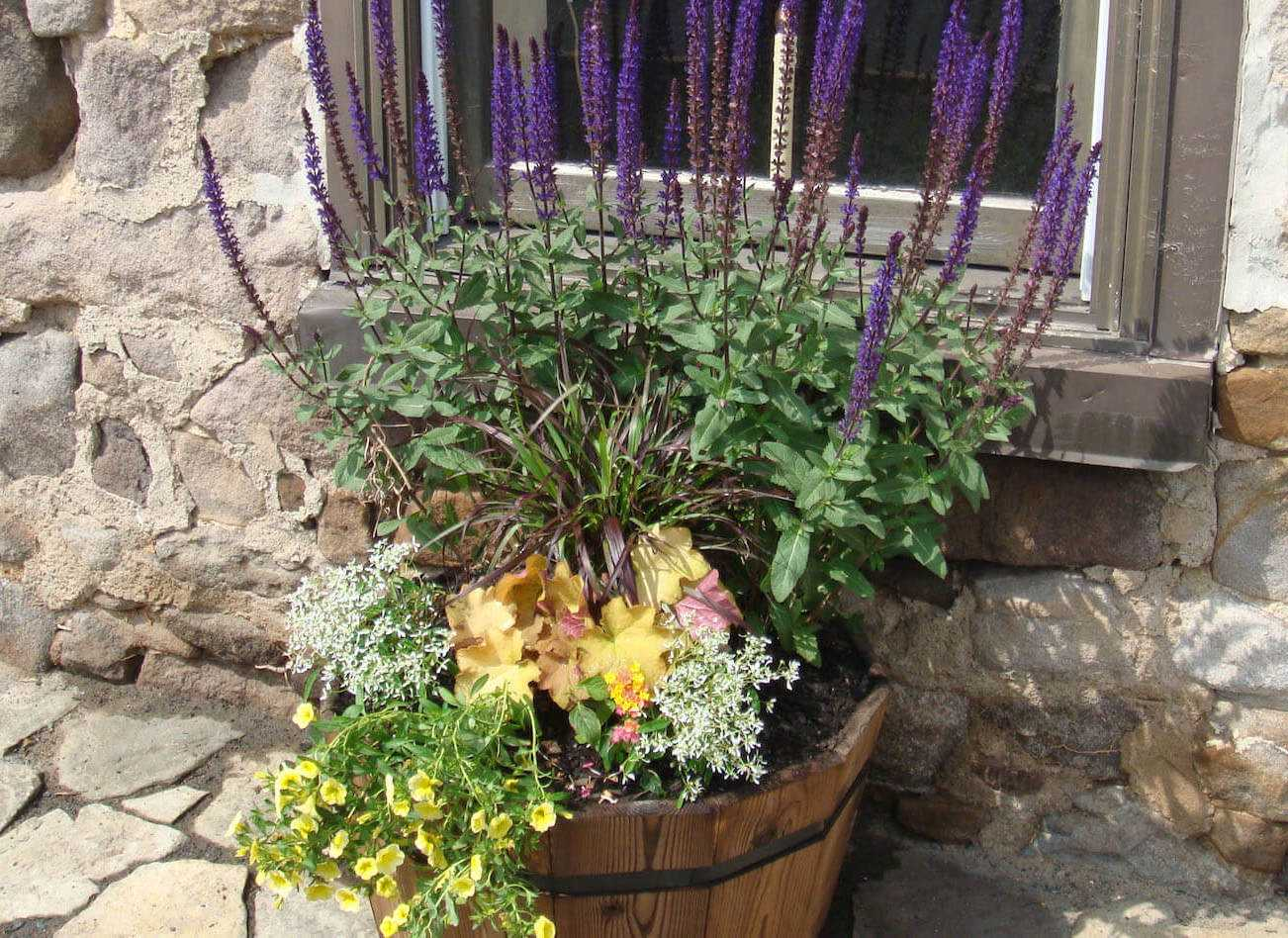 flowers inside wood basket outside of window