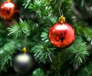 December's Details