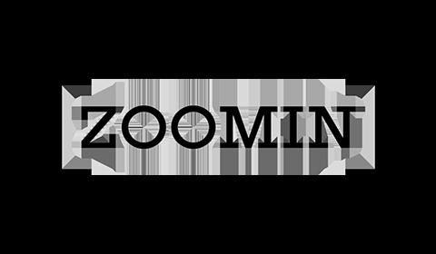 Logo of Zoomin