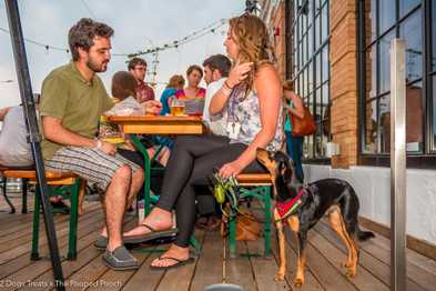8 Colorado Breweries that Welcome Your Dog