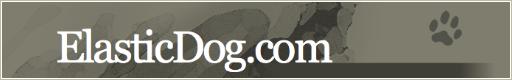 ElasticDog.com's Design from 2008