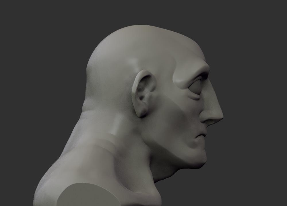 Bust 4