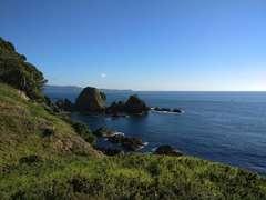 Tawharanui Point