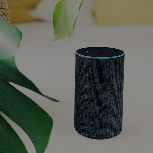 Getting Started with Voice UI