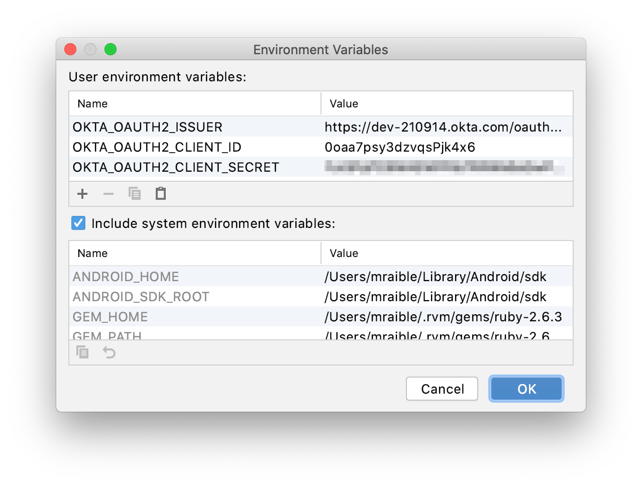 IntelliJ Environment Variables