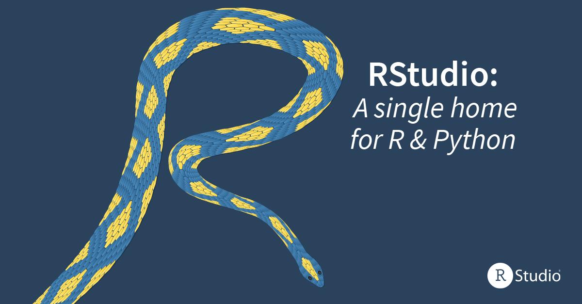 R and Python logo