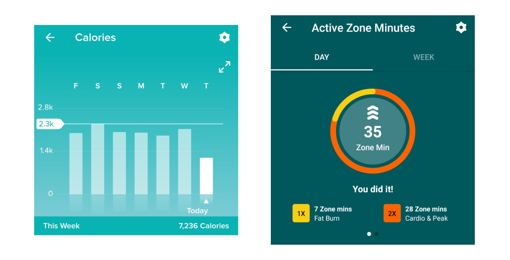 """A bar chart showing calories burned each day over the course of a week, and a variant on a pie chart showing what proportion of overall exercise time took place in the """"fat burn"""" zone and in the """"cardio and peak"""" zones"""