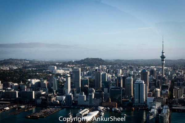 Auckland_Seaplanes-11