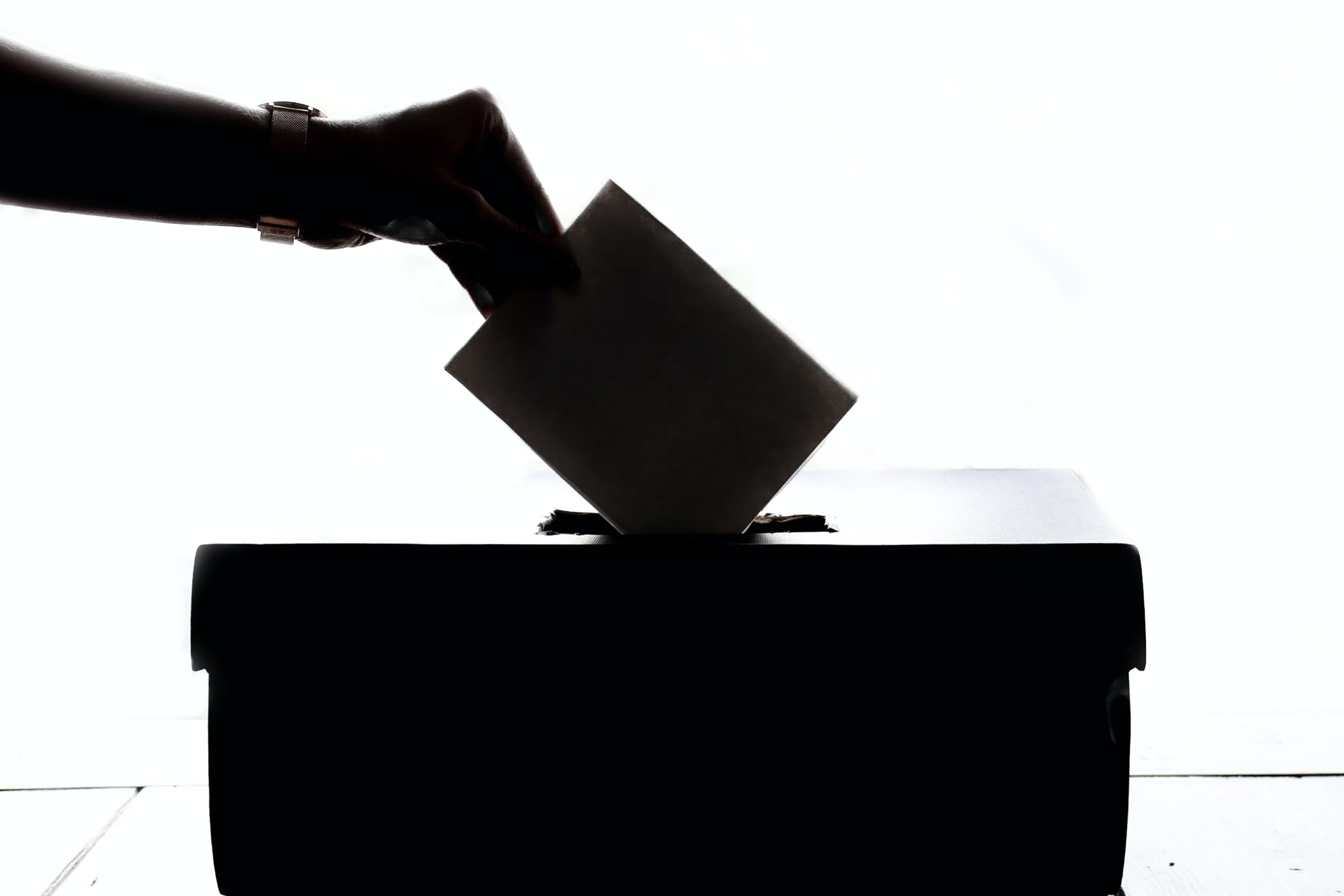 Voting logo.