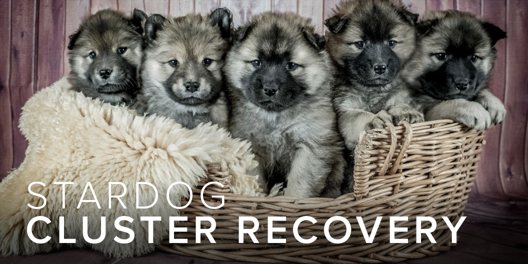 Stardog Cluster Recovery