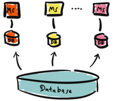 Microservices with multiple databases