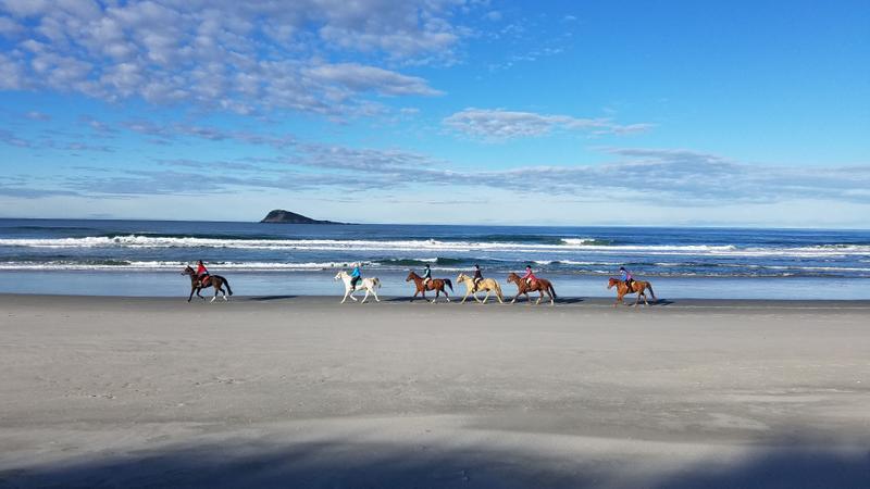 Horses and riders enjoying the beach
