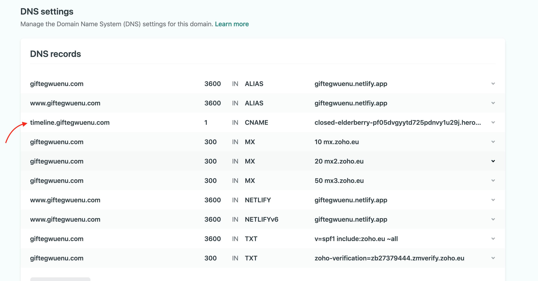 Netlify DNS Setup