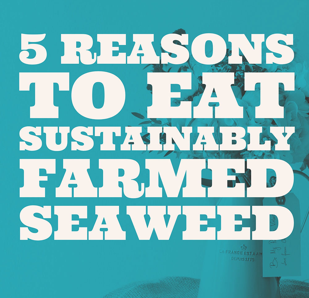 5 reasons to eat sustainably farmed seaweed
