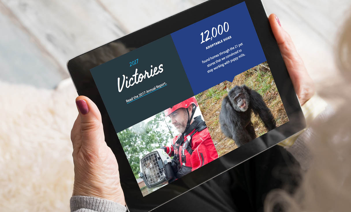 Tablet view of the HSUS website - landscape