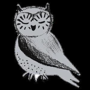 Oona the Owl illustration.