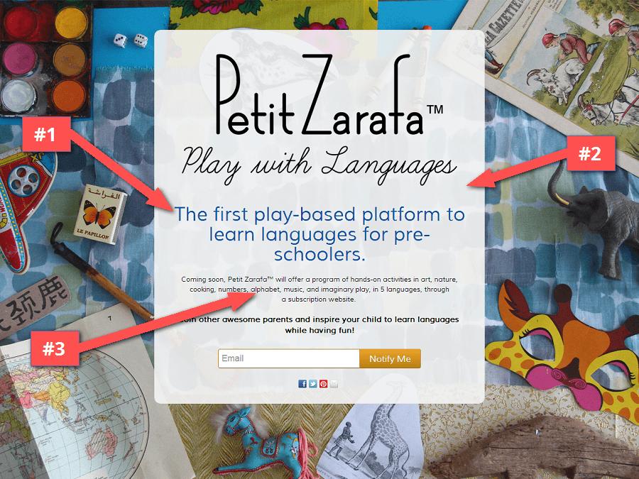 Petit_Zarafa_landing_page_review