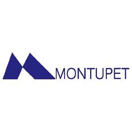 Montupet - Référence client de IPAJE Business Games