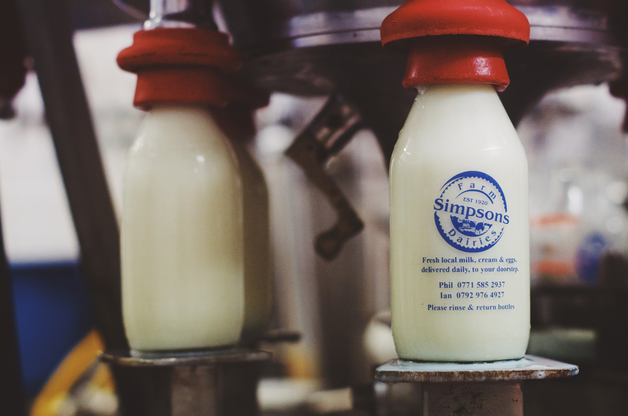 Milk production into glass pint bottles by Lancashire dairy farm, Simpsons Farm Dairies