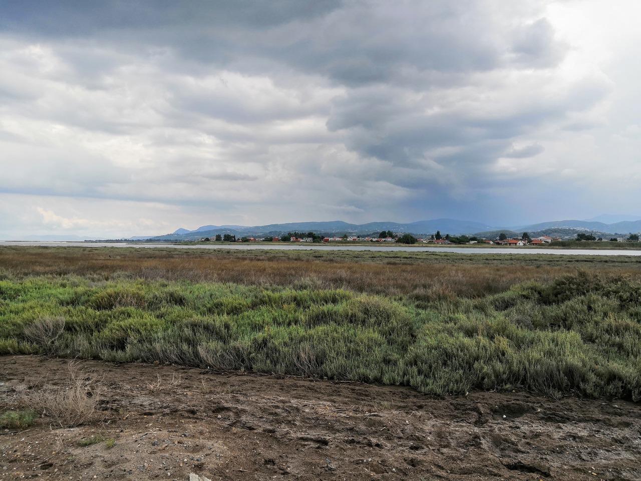 Seaside cloudy wetland view