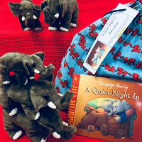 Storysack containing A Quiet Night In and elephant toys
