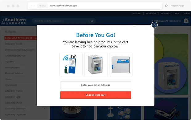 Before you go popup