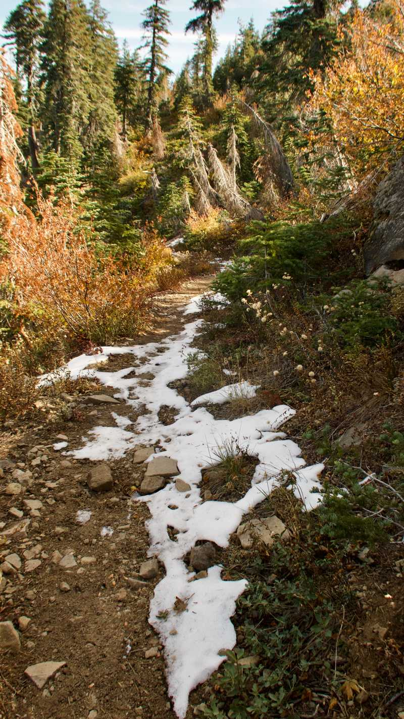A small patch of snow