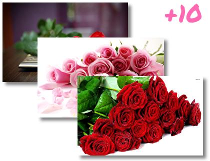 Roses theme pack