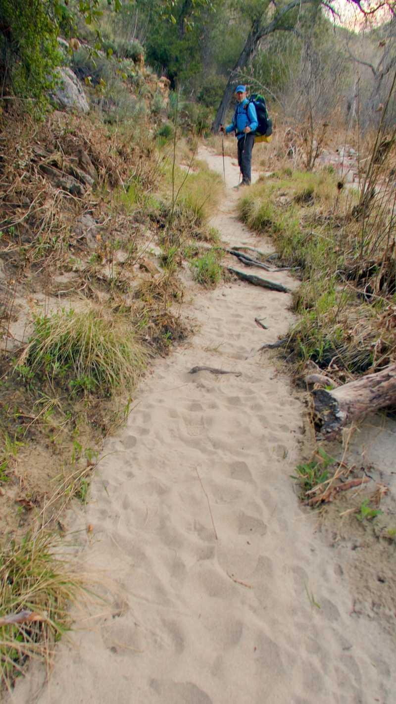 Sandy trail along Agua Caliente Creek