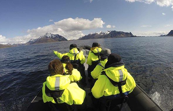 Aktiviteter Lofoten Anker Brygge