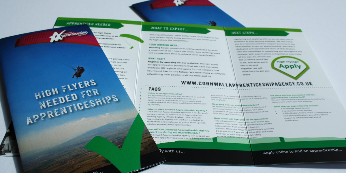 image of final dl brochure for the CAA