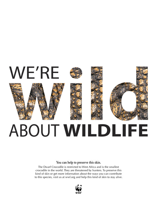 World Wildlife Fund Layout Design