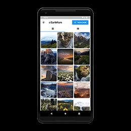 Subreddit screen showing grid of images.