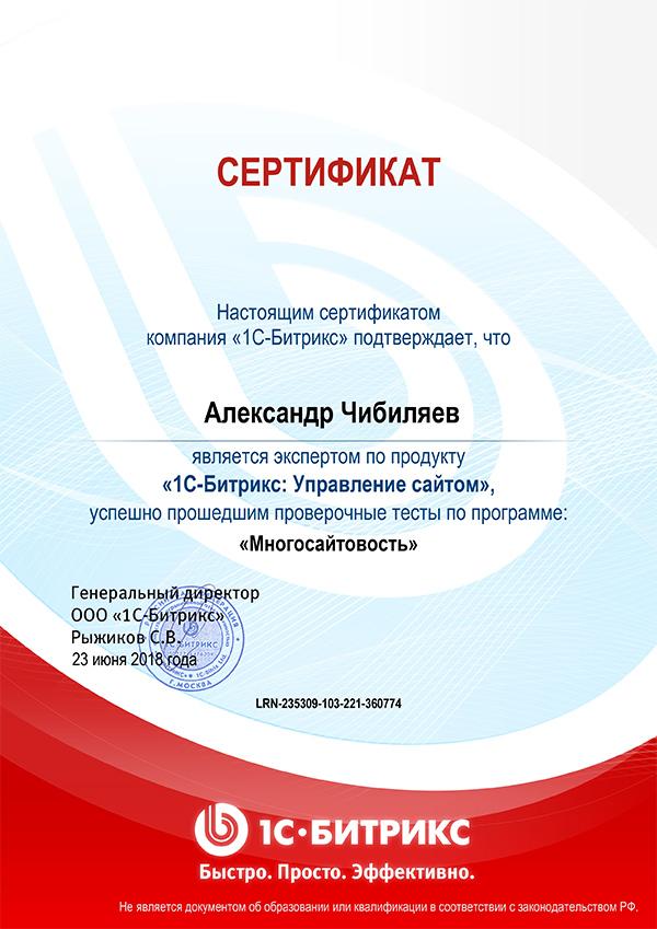Multi-website