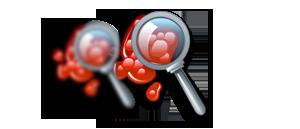 Assessment and Diagnostics