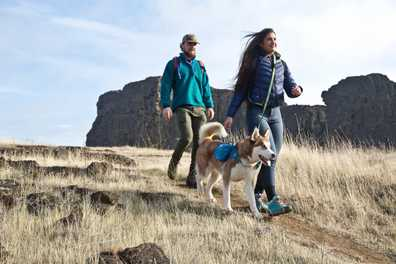 10 Must-Haves for Hiking with Your Dog