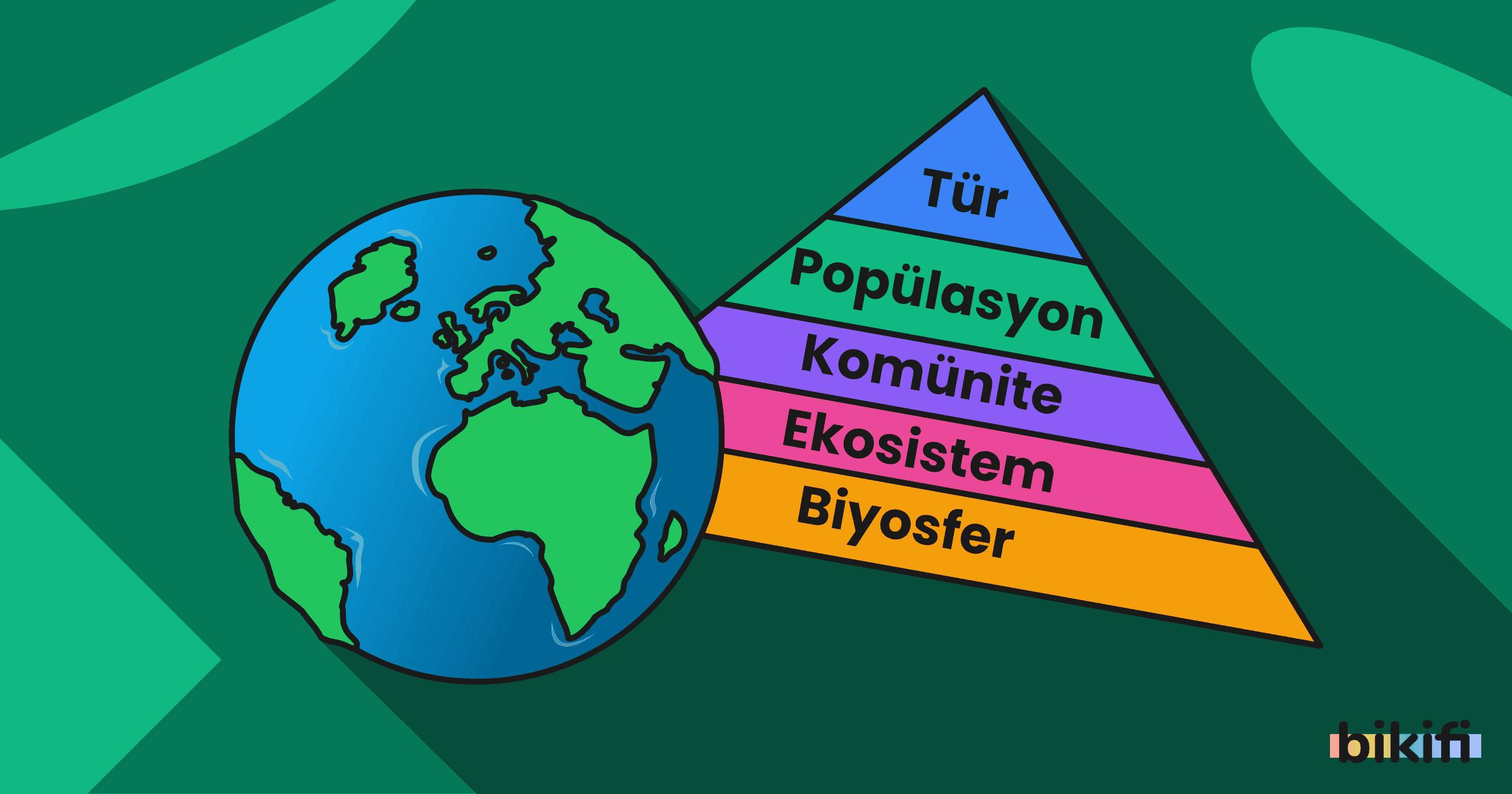 Ekosistem Ekolojisi