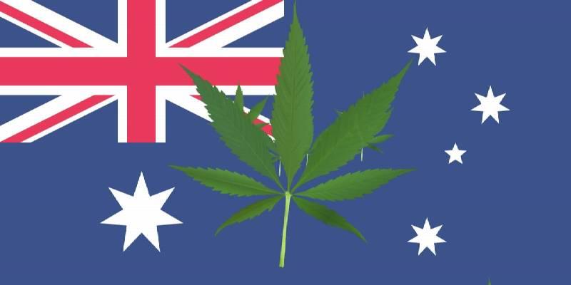 Australia's Cannabis Industry in 2019